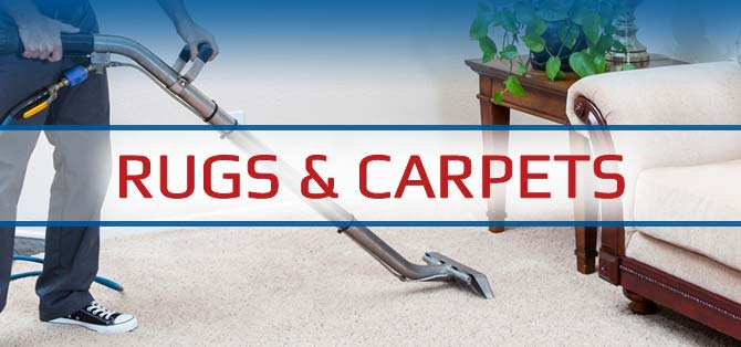 SaniTech Services Rug and Carpet Cleaning