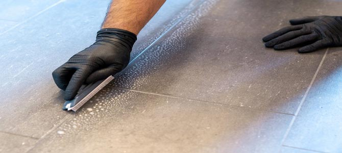 SaniTECH Victoria Grout Cleaning Highlight image