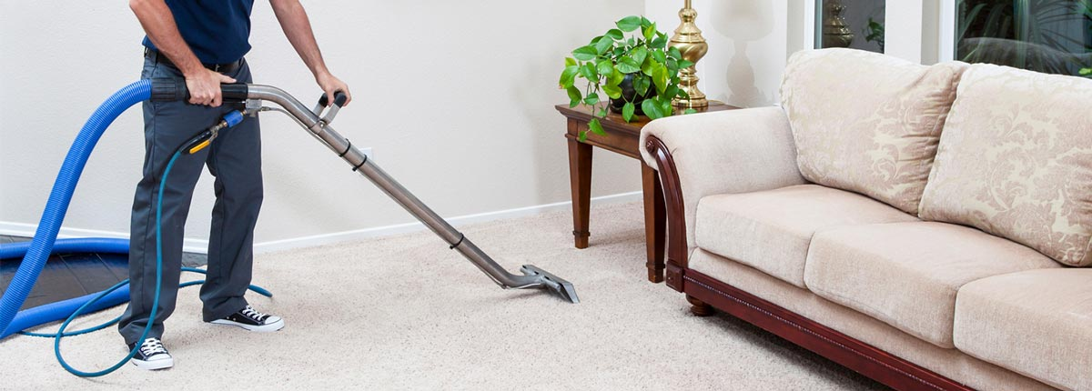 SaniTECH Victoria Rugs and Carpets Cleaning